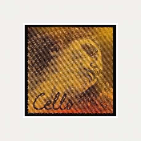 CELLO STRING PIRASTRO EVAH PIRAZZI GOLD 2 D