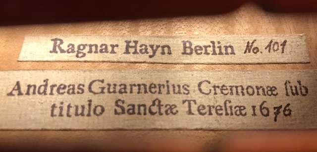 Ragnar Hayn viola profesional