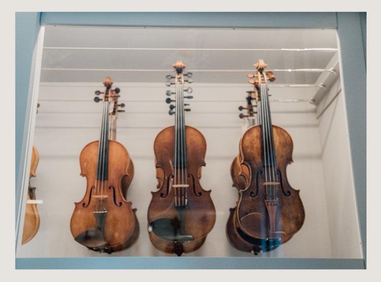 Alquiler de instrumentos España