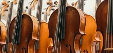 Búsqueda de instrumentos